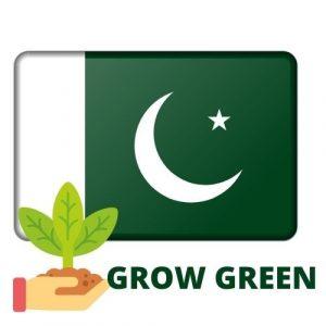 kitchen gardening in Pakistan
